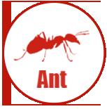 Milwaukee Bed Bug Exterminator Pest Control Service A